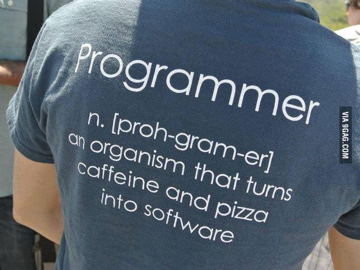 Définition du développeur